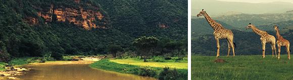 Mkomazi River