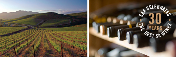 Business Class wines with South African Airways