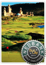 Nedbank Golf image