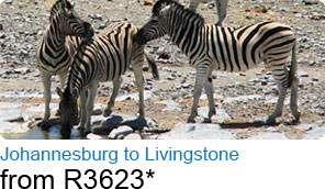 Johannesburg to Livingstone from R3623*